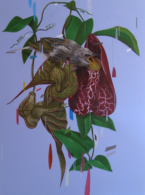 Птицы на картинах, цветы на картинах, картины американского художника, картины акриловыми красками