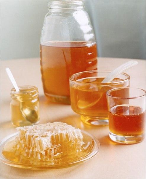 мед (493x604, 45Kb)
