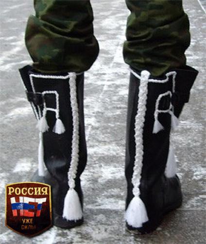 http://img0.liveinternet.ru/images/attach/c/5/88/49/88049314_sapog.jpg