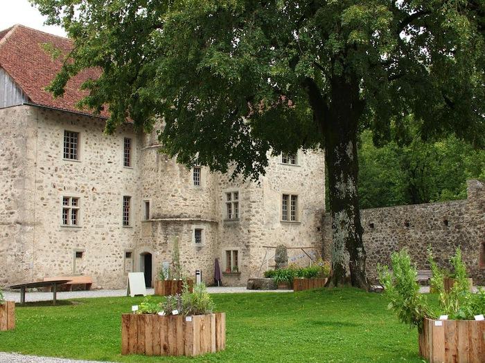 Замок Хальвиль (Schloss Hallwyl) 64553