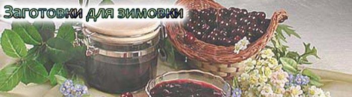 konservashki (700x194, 38Kb)