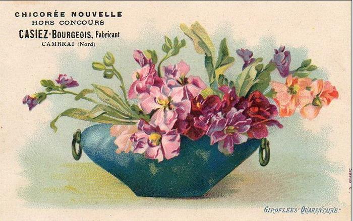Язык цветов старинные открытки 67
