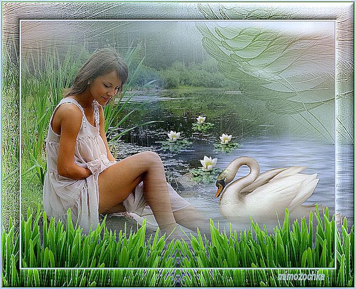 белый лебедь (700x568, 184Kb)