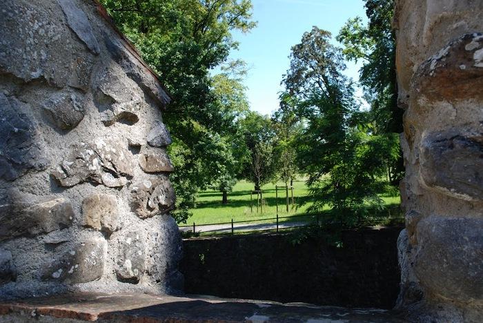 Замок Хальвиль (Schloss Hallwyl) 77962