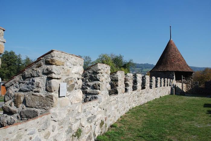 Замок Хальвиль (Schloss Hallwyl) 78935