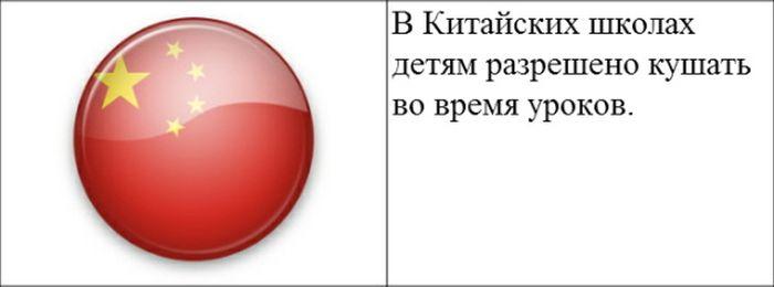 zakon_03 (700x260, 17Kb)