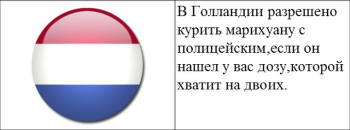 zakon_07 (700x260, 22Kb)