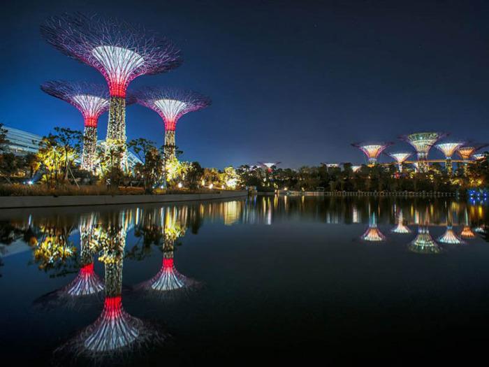 сады в сингапуре 6 (700x525, 104Kb)