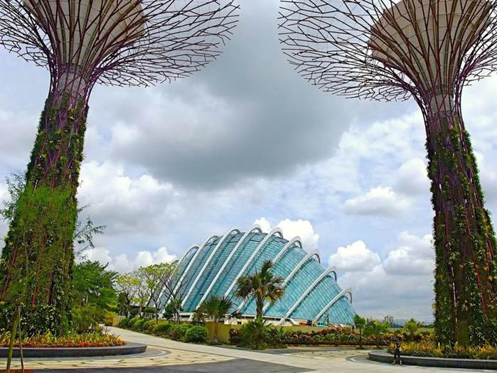 сады в сингапуре фото 1 (700x525, 167Kb)