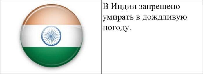 strannye_zakony_20_foto_4 (700x257, 19Kb)