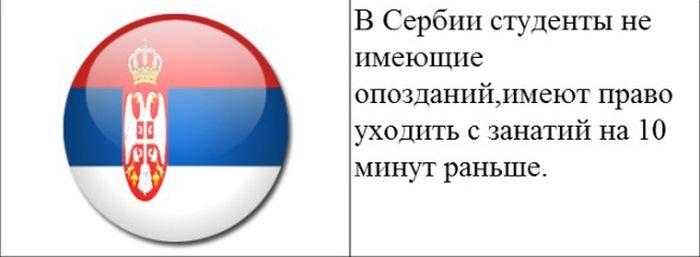 strannye_zakony_20_foto_16 (700x257, 26Kb)