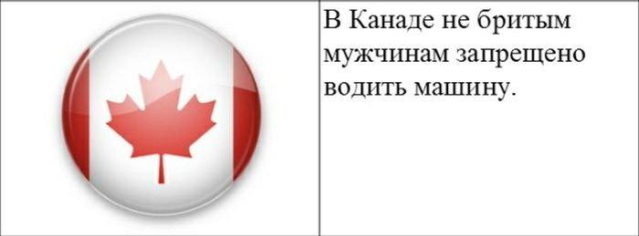 strannye_zakony_20_foto_18 (700x259, 21Kb)
