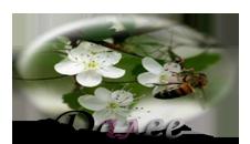 пчела-ред. (226x130, 41Kb)