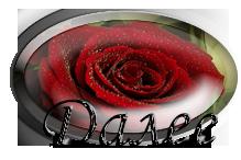 роза4 - Копие (219x146, 53Kb)
