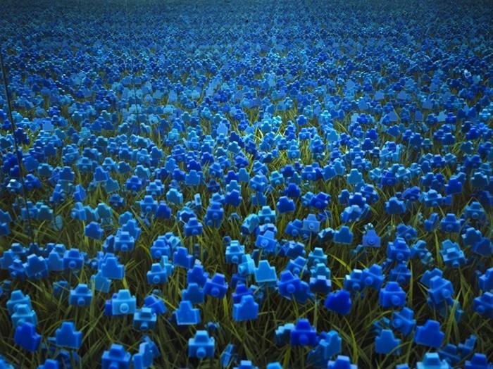 3925073_Camera_Flowers_2 (700x524, 150Kb)