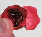 Превью роза7 (500x440, 37Kb)