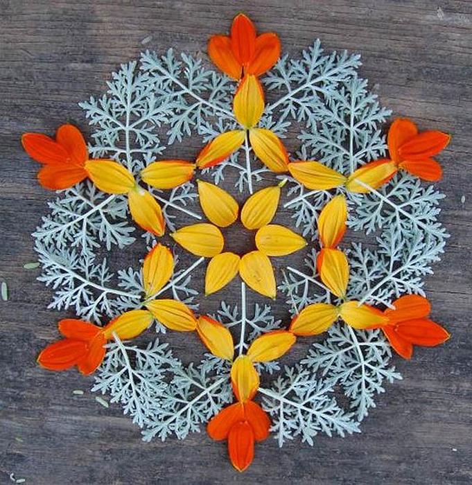 цветочные мандалы фото 10 (681x700, 227Kb)