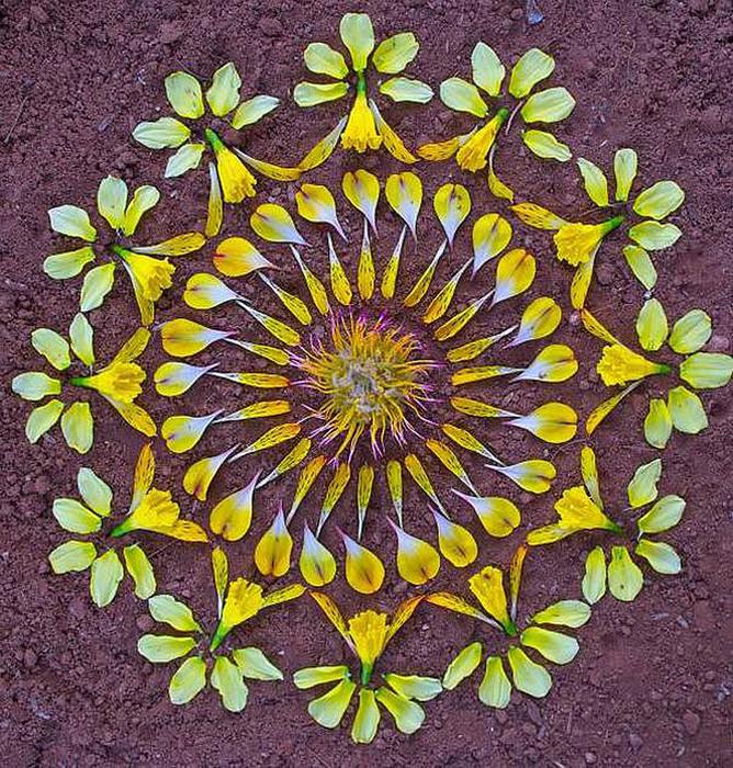 цветочные мандалы фото 16 (668x700, 291Kb)
