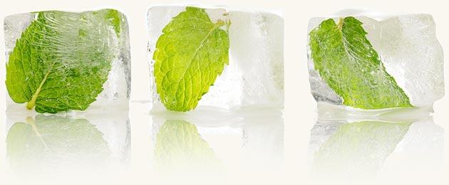 мята,мятная вода,мято и лёд,природная косметика,тоник из мяты