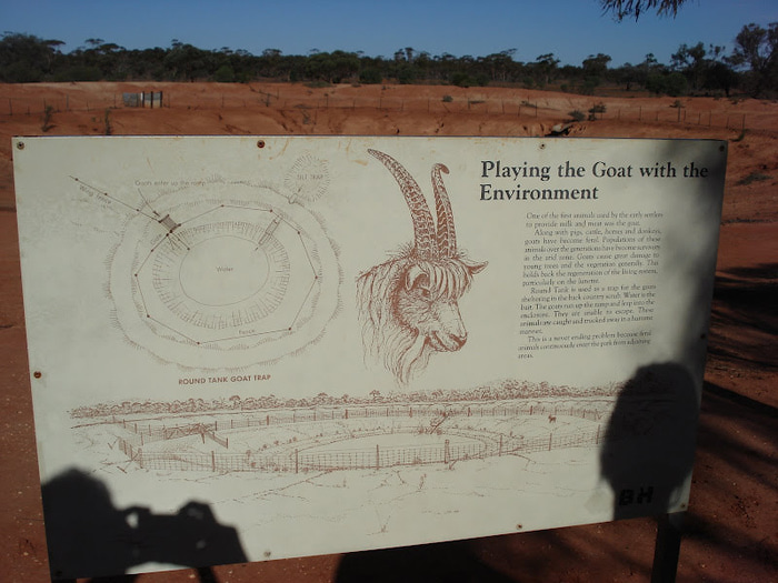 Национальный Парк Манго - Mungo National Park 56651