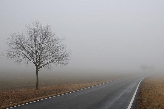 в тумане (550x366, 50Kb)