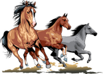Превью running_horses_05 (700x510, 267Kb)