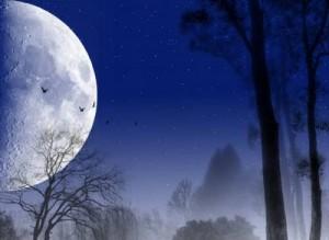19-marta-luna-byla-maksimalno-blizka-300x219 (300x219, 15Kb)