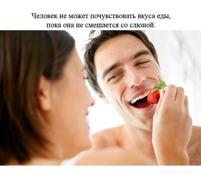 fakty_o_cheloveke_24_foto_2 (700x604, 47Kb)