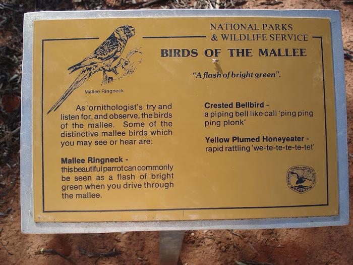 Национальный Парк Манго - Mungo National Park 66322
