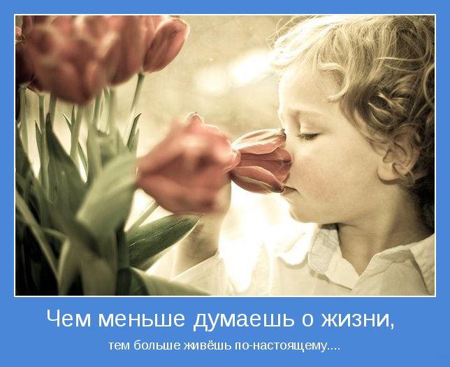 380728_466471146716371_834042070_n[1] (644x525, 48Kb)