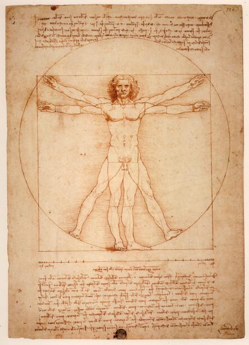 Золотое сечение Леонардо,Леонардо да Винчи (500x692, 109Kb)