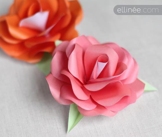 Фото роз своими руками