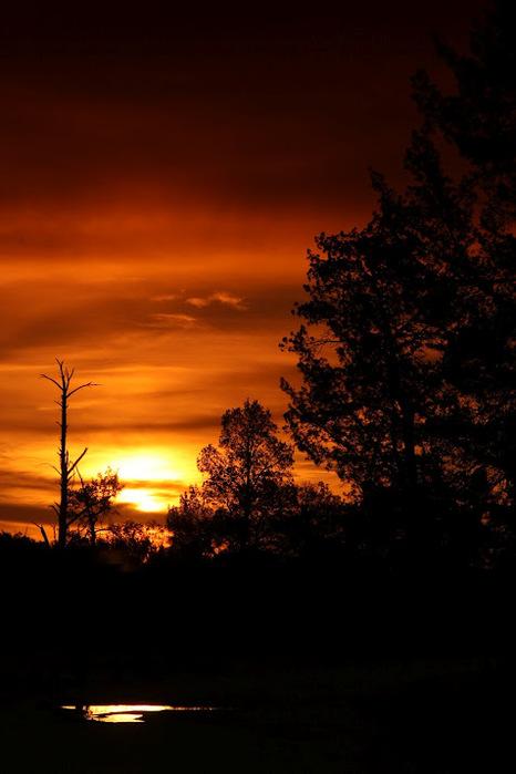 Национальный Парк Манго - Mungo National Park 49995