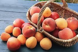 Персики (275x183, 39Kb)
