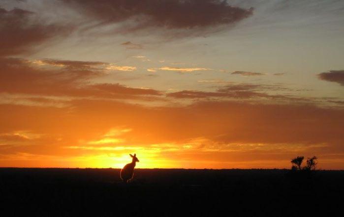 Национальный Парк Манго - Mungo National Park 15008