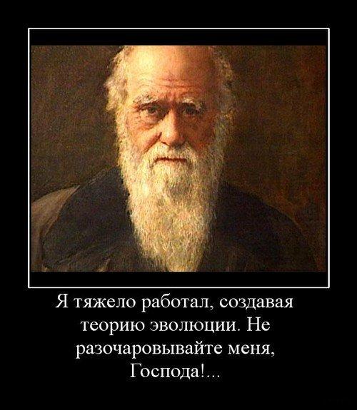 1341821571_darvinizm (500x575, 50Kb)