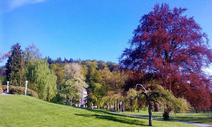 Курорт Марианске Лазне - зелёная жемчужина Чехии. 71567