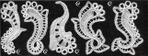 Превью 297125-2b2b4-55131956-h500-ud7d8e (700x263, 108Kb)