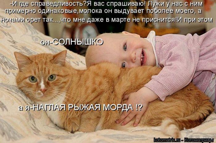 kotomatrix_32 (700x466, 79Kb)