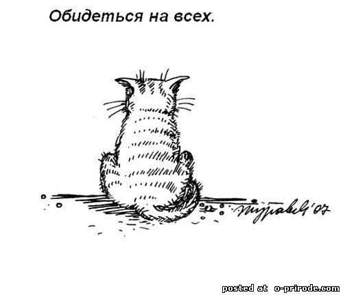 Kot_umet_11 (500x430, 23Kb)