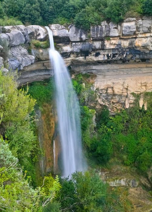 Природный парк Сан Мигель дель Фай. 98595