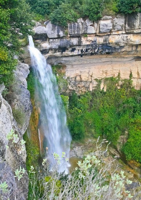 Природный парк Сан Мигель дель Фай. 82457