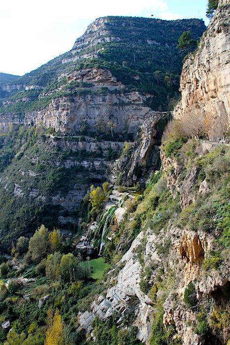 Природный парк Сан Мигель дель Фай. 33733