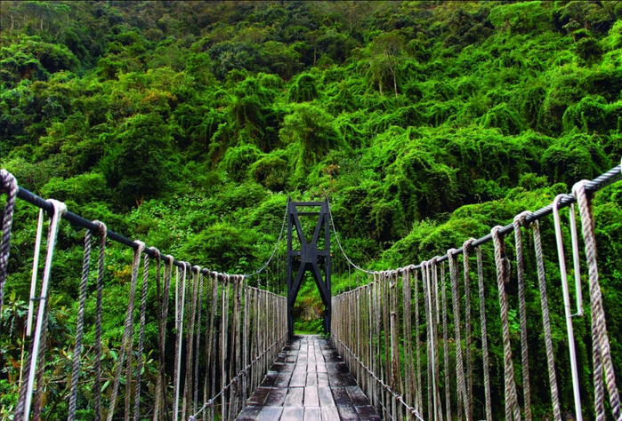 Картинки по запросу Даосский ритуал «Перейти мост»