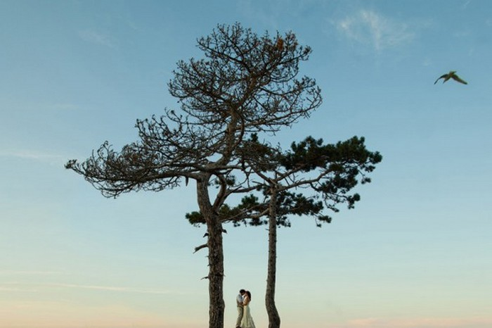 Тема свадьбы в фотографиях Jonas Peterson 4 (700x466, 59Kb)