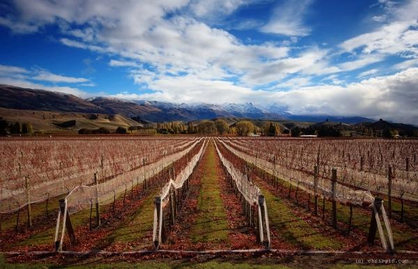 Новая Зеландия - завораживающие пейзажи18 (600x387, 233Kb)