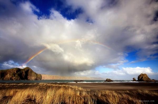 Новая Зеландия - завораживающие пейзажи43 (600x398, 160Kb)