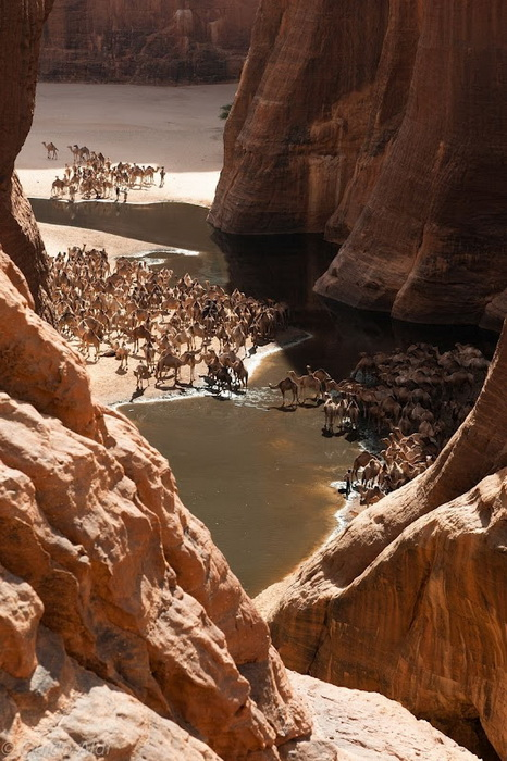 ennedi-desert-6 (466x700, 157Kb)