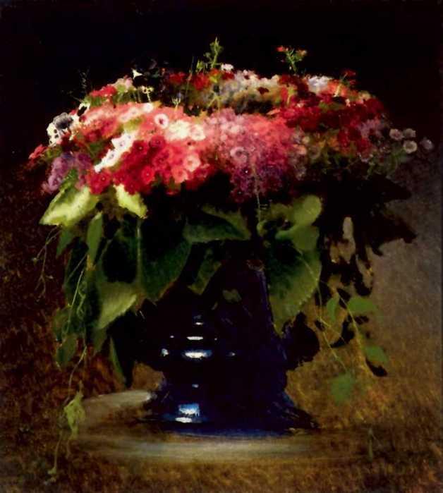 Картинки цветов флоксы 2