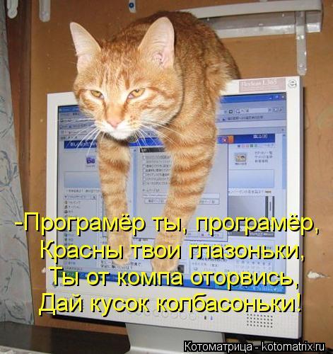 kotomatritsa_98 (471x500, 54Kb)